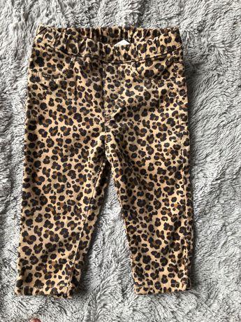 Spodnie w panterkę idealne na jesień h&m r.74 Dla dziewczynki