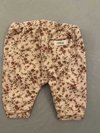 Spodnie Newbie r.56