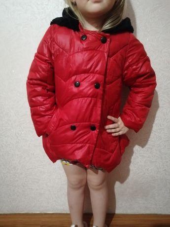Курточки, пальто, жилетка