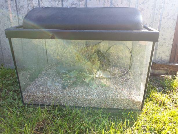 Akwarium 20 litrów