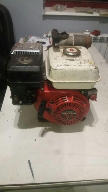 Pompa spalinowa cisnieniowa WH20X