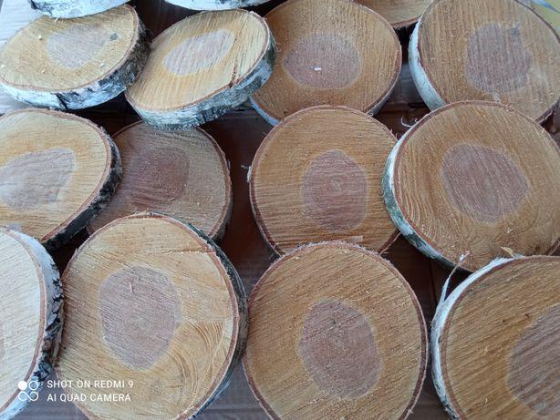 Plastry z brzozy,19 cm, krążek drewna