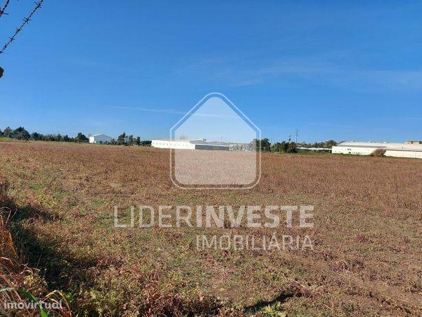 Terreno 4.15 ha | Armazém agrícola 1 508 m2 | Beja