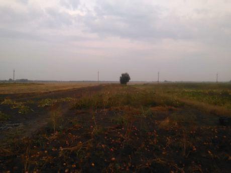 Земельна ділянка в м. Узин