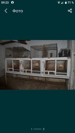 Продам клітку під крилі або другу живність