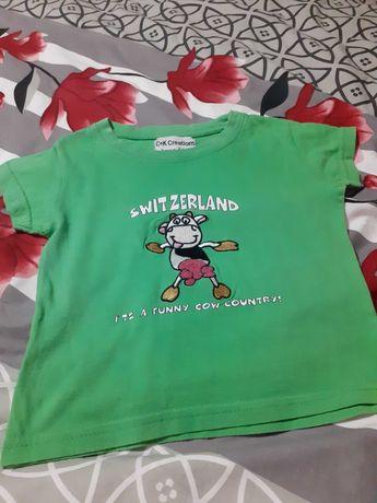 T-shirt zielony z krówką