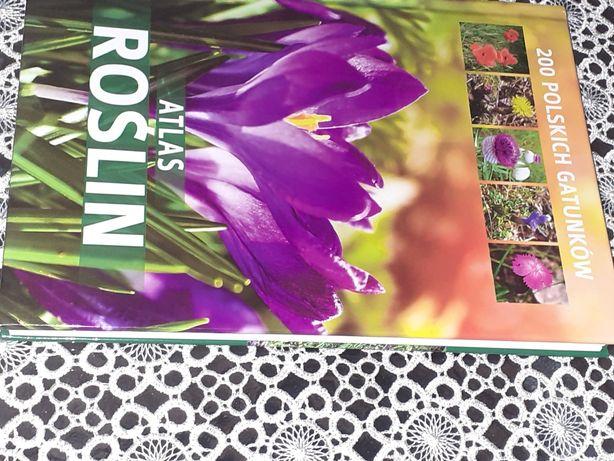 Atlas roślin 200 gatunków