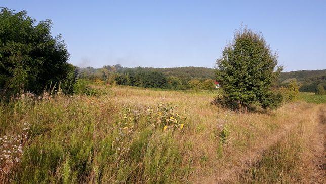 Продається земельна ділянка в селі Ходорів