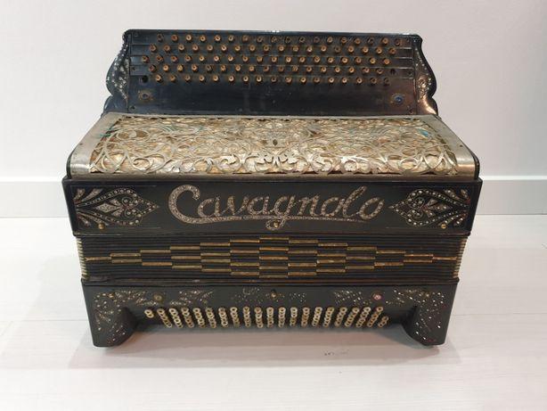 Harmonia Cavagnolo Lyon