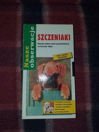 Szczeniaki VHS
