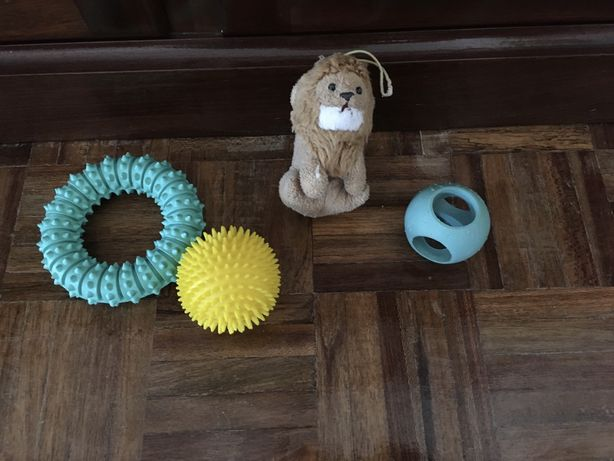 Conjunto de 4 brinquedos para cães