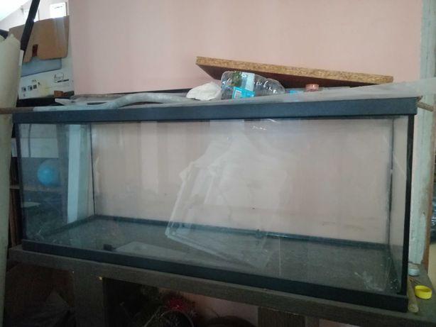 Aquário grande para peixes ou répteis
