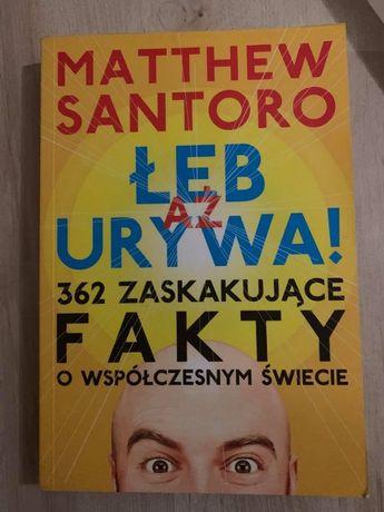 Aż łeb urywa 362 zaskakujące fakty o współczesnym świecie M. Santoro