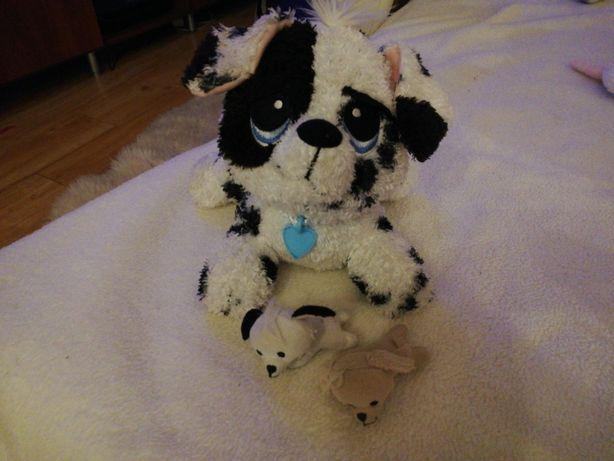 Dalmatyńczyk z dwoma szczeniakami interaktywny
