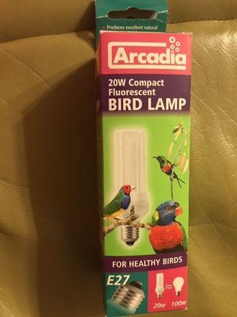 Lampa UV dla ptaków