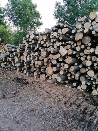 Drewno kominkowe i opałowe do pieców co Elbląg Braniewo