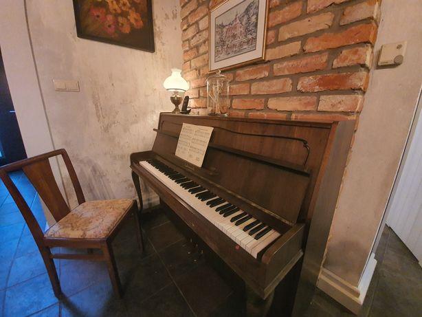 Pianino Calisia Chippendale M-105