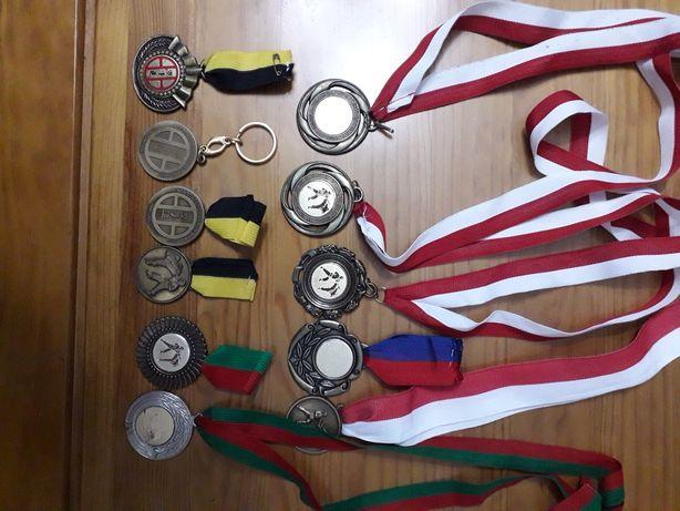 Medalhas de karaté, karting e equitação.