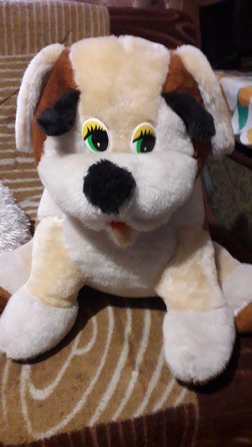 Собака,игрушка.