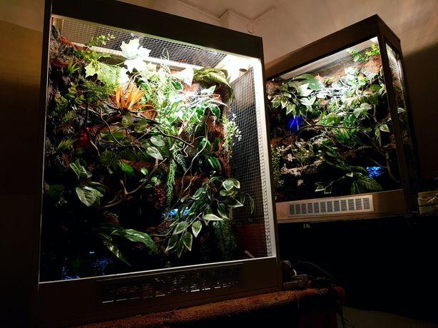 Terrarium dla kameleona 80x40x100