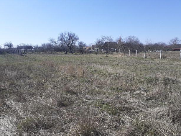 Земельна ділянка Діброва