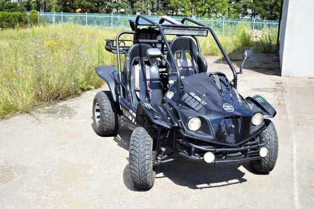 Buggy Zumico 250