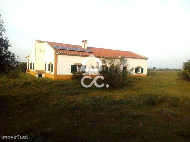 Quinta V3 situada em Beja na zona de Vila Azedo com dois hectares de t