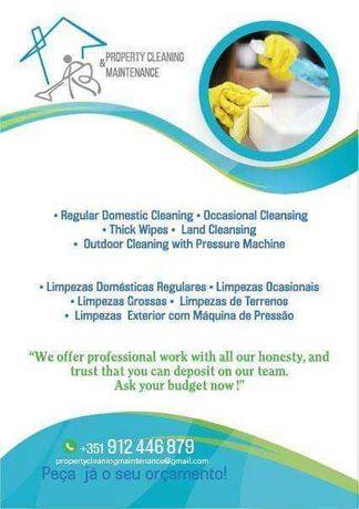 Serviços de limpeza doméstica - 15.00€ por hora