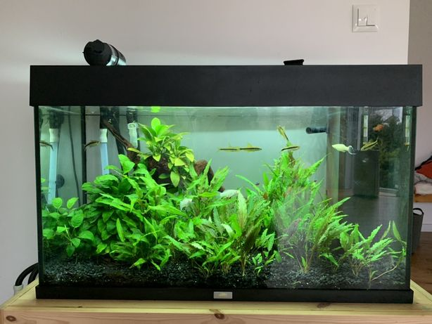 Akwarium Juvel Rio 120 + fluval filtr zew calosc