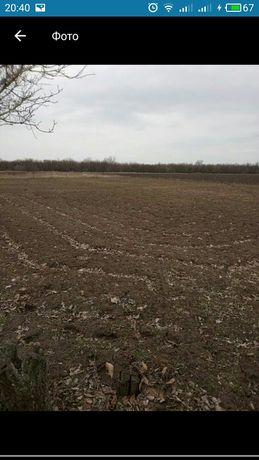 Продам земельный пай