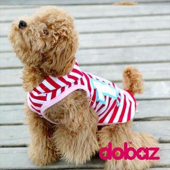 DOBAZ bluza dla pieska psa York Shih Buldog