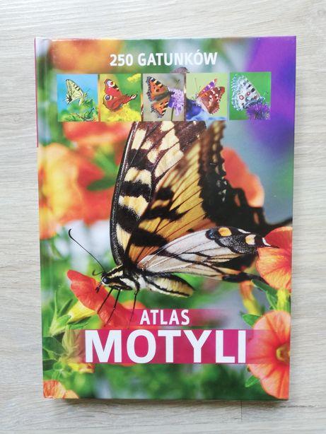 Atlas motyli w twardej oprawie