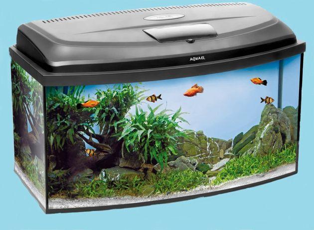 Akwarium z pokrywą Led 54l 60x30x30 profil