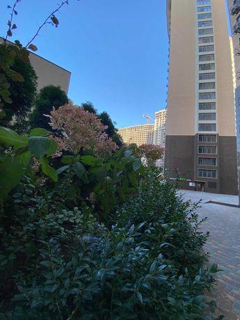 V Однокомнатная квартира на Генуэзской , цена 49000.