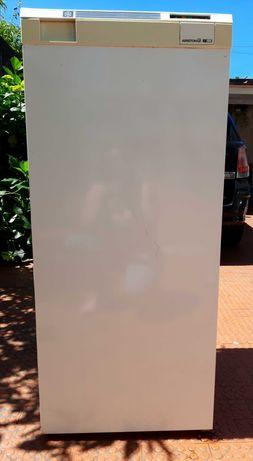 Arca frigorífica vertical ARISTON