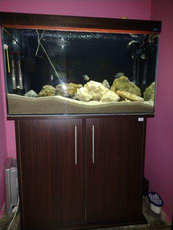 Akwarium 126l zestaw z życiem