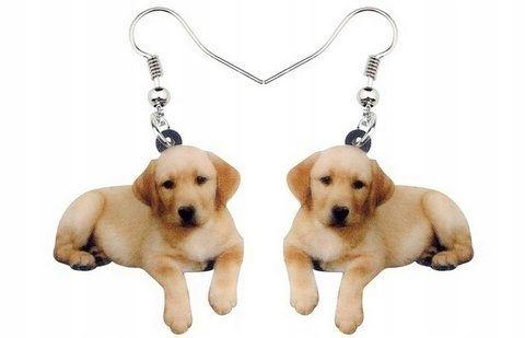 Kolczyki pies labrador golden retriever nr2