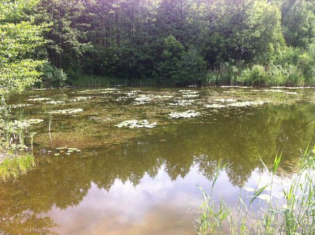 Озеро и земельный участок под строительство