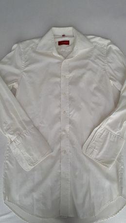 Męska, bawełniana, taliowana, biała koszula, Willsoor