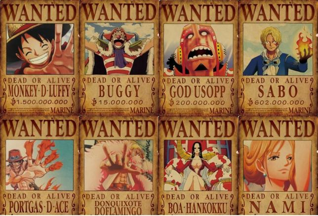 Posters - Wanted One Piece