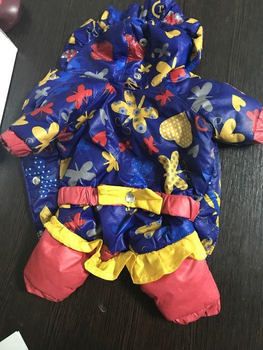 Продаю куртку для собаки Мариуполь - изображение 1