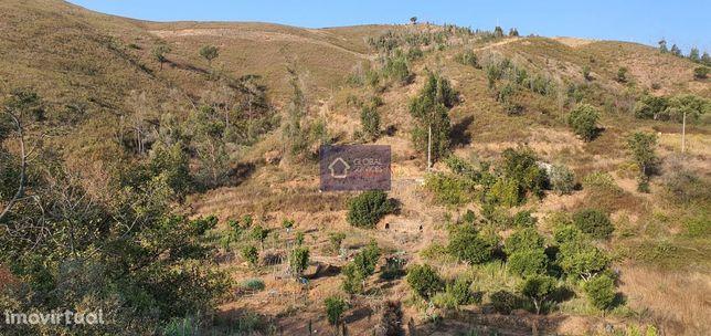 Vende-se Terreno Rústico na Ribeira das Canas - Monchique GS17484GC