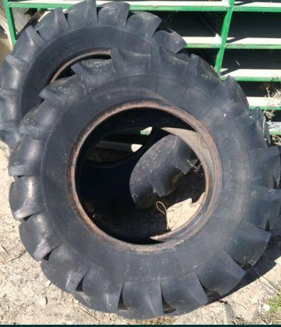 Crossfit-pneus para treino