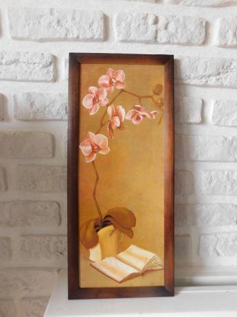 Obraz storczyk w ramie obrazek