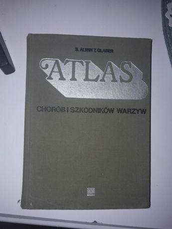 Atlas chorób i szkodników warzyw