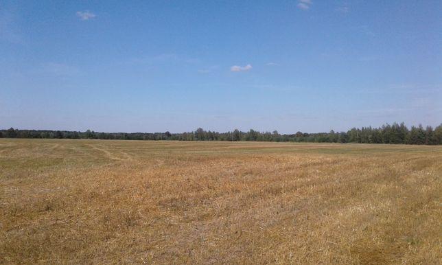 Продам земельну ділянку біля с.Бреч 5,88га