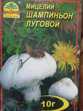Продам Мицелий грибов