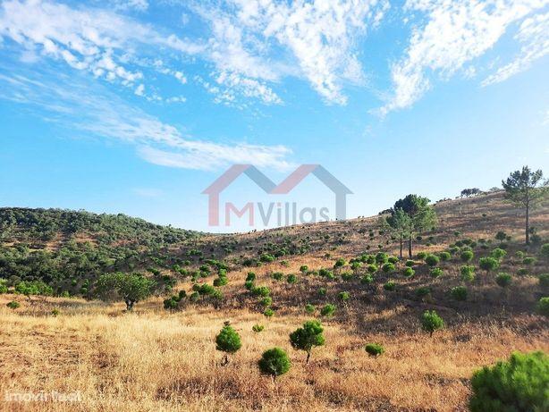 Grande terreno para construção de 2 moradias - Querença