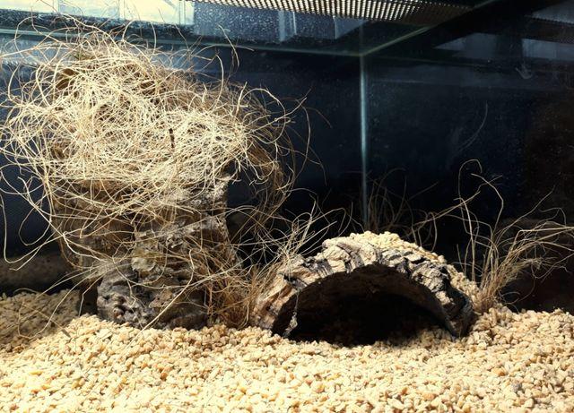 Texas Stone 2-8 mm - podłoże do terrarium pustynnego 5 kg
