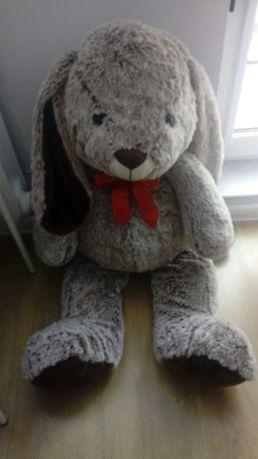 Mega duży królik stan idealny zapraszam